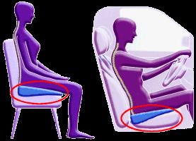 Best Seat Cushion