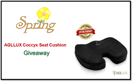 Spring Giveaway 2018 - Seat Cushion