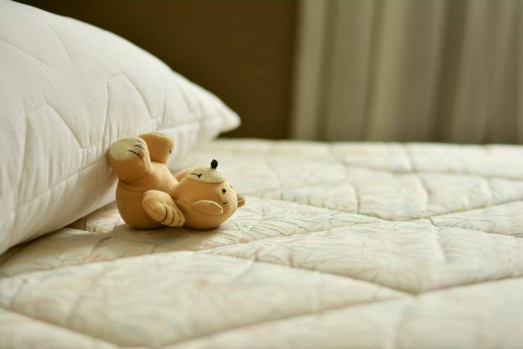 Bed Mattress, Pillow and a Stuffed Toy